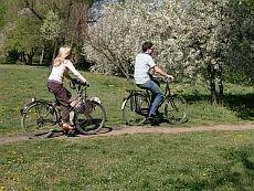 www.ruszajwpolske.pl/ofertySpecjalne/wybrzeze_baltyckie/weekend_majowy/r,24,102,1,index.html/