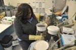 praca nad próbkami biologicznymi
